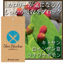 スリムブロッカー[1袋]60粒